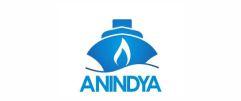 Anindya Wiraputra Konsult
